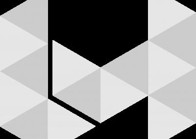 Logo in Silver_ No Text